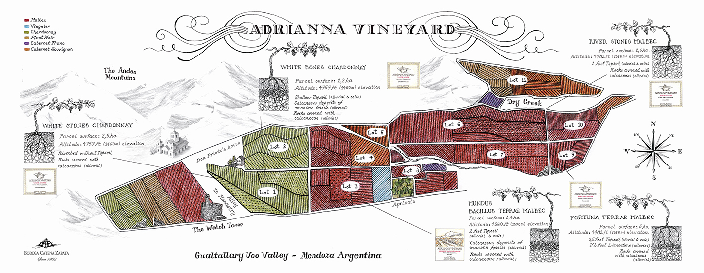 Mapa Adrianna Vineyard